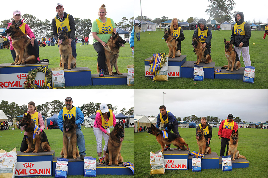 43rd GSD National <br>Melbourne, May 2015